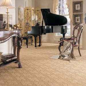 Carpet Cleaning Service Bernardsville