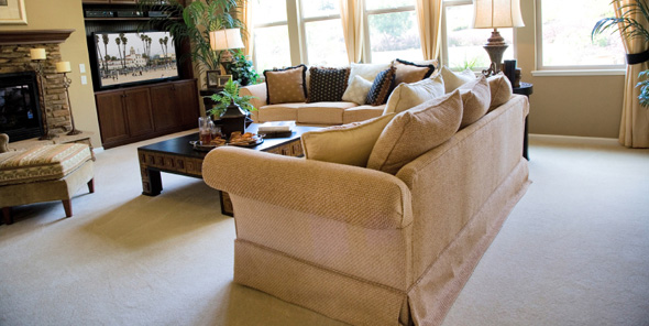 Furniture Upholstery Cleaning Lincoln Park