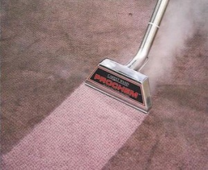 Top Carpet Cleaning Products in 2013