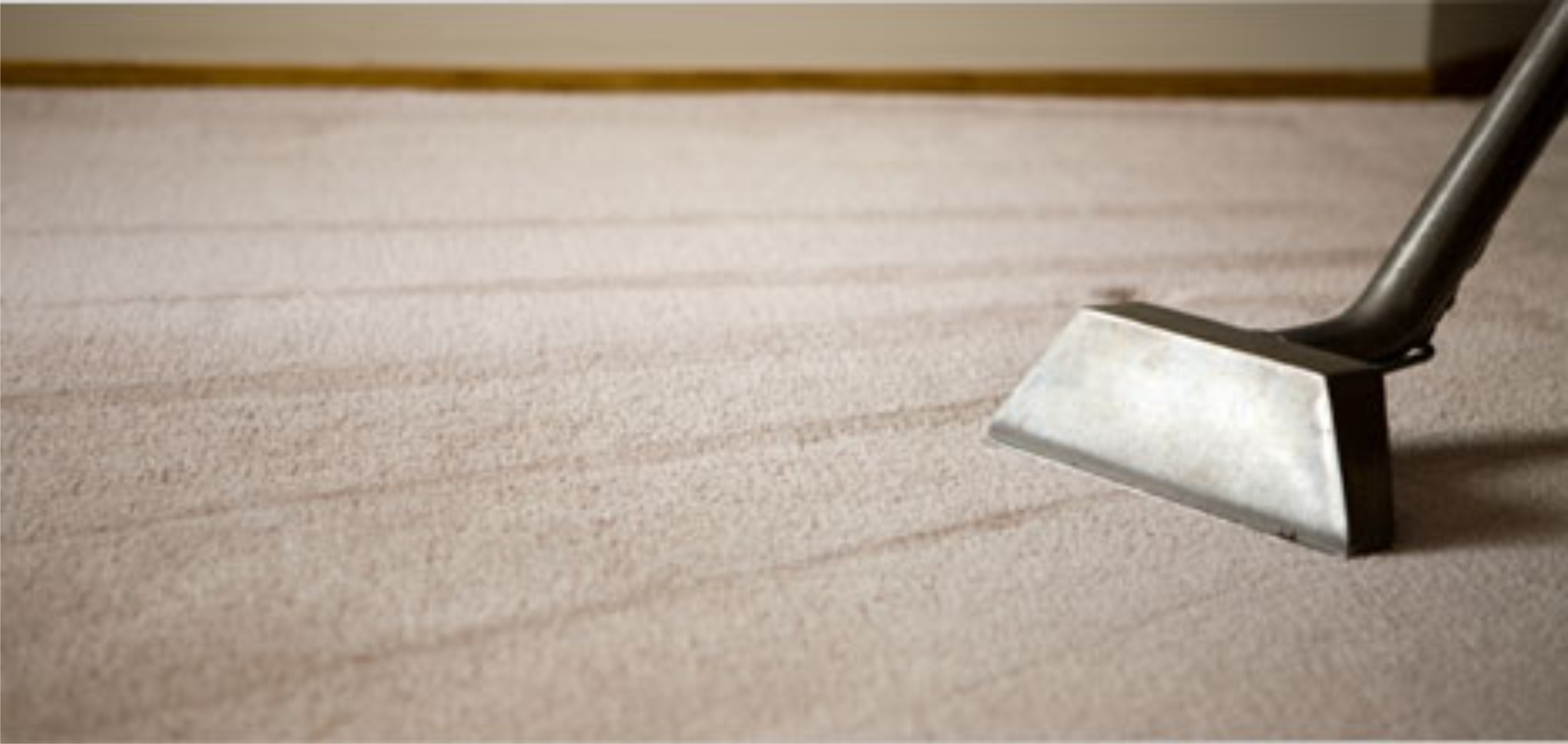 Arlington Wa Carpet Cleaning Steam Cleaners Camano Island