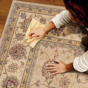Non-Toxic Carpet Cleaning Services In Basking Ridge, NJ