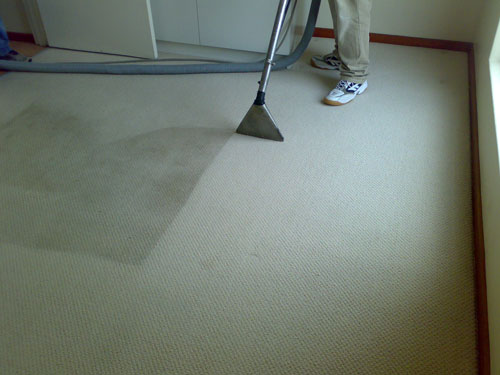 Professional Carpet Cleaning After Flood Nj High Quality Carpet Cleaners