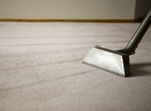 Warren NJ, Area Rug Cleaning Services