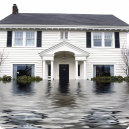 Water Damage Restoration Princeton Meadows, NJ