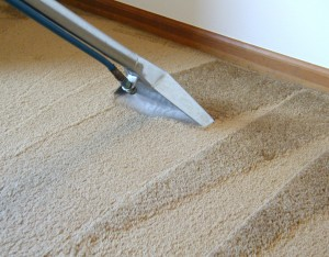 Revitalize Your Carpets